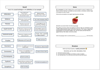 Sound, Sense and Structure worksheet