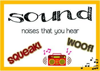 Sound Systems Vocabulary Word Wall Cards (Vocab)