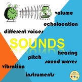 Sound Unit Science How Humans and Animals Hear Ear Anatomy Instruments Vibration