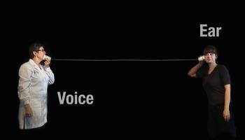 Sound & Waves NGSS:Sound & Vibrations ❤ BUNDLE:Activity, Reading,Assessment—SALE