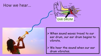 Sound and Sound Waves : Next Gen 1st Grade Mini-Unit