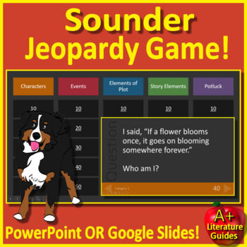Sounder Review Game