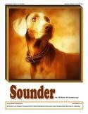 Sounder: Literature Unit