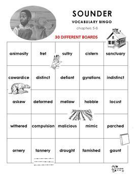 Sounder Vocabulary Bingo
