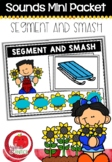 Sounds Literacy Centre Mini-Packets: Segment and Smash Sunflowers