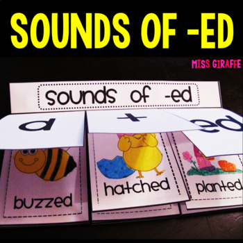 Sounds of ED Book