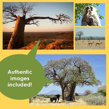 South Africa! The Baobab Tree - Lesson, No Prep Craft, & Writing Activity