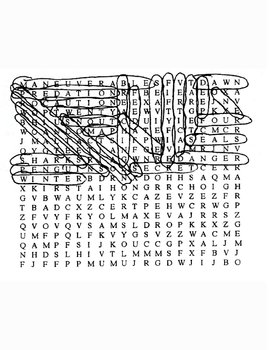South African Great White Shark Word Search