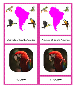 South America Resource Pack for The Montessori Classroom 3-Part Cards