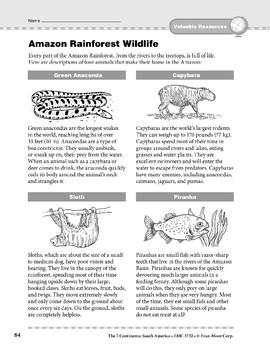 South America: Resources: Amazon Rainforest Wildlife
