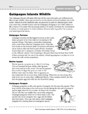 South America: Resources: Galapagos Islands Wildlife