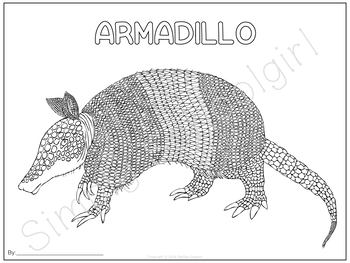 South America Unit Study: Art Pages for South American Animals