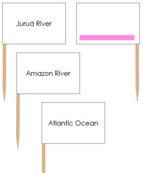 South American Waterways Map Labels - Pin Map Flags (color-coded)