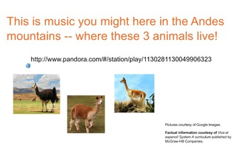 South American Animals, Geography