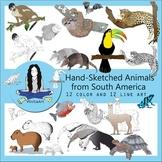 South American Animals clip art bundle