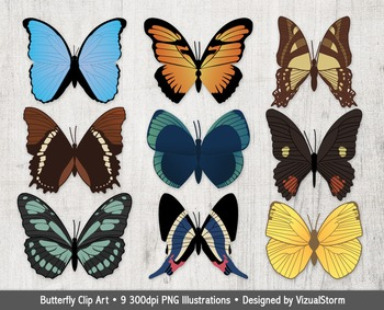 South American Butterfly Clip Art, 9 Hand Drawn Vintage Butterflies, PNG Images