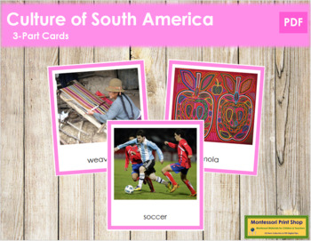 South American Culture: 3-Part Cards (color borders)