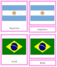 South American Flags: 3-Part Cards (color borders)