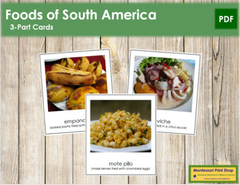 South American Food: 3-Part Cards