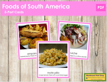 South American Food: 3-Part Cards (color borders)