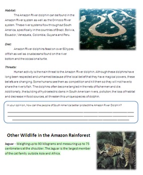 South American Geography, Environment and Wildlife