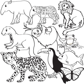 South American Animals Clip Art  - Amazon Wildlife