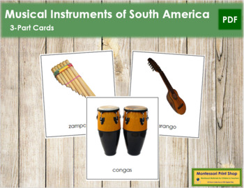South American Musical Instruments: 3-Part Cards