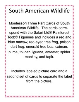 South American Wildlife - Montessori 3 part cards