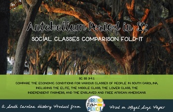 South Carolina 3-4.1 Antebellum Period Social Classes Comparison