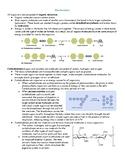South Carolina Biology EOC Review Handouts & Study Guide