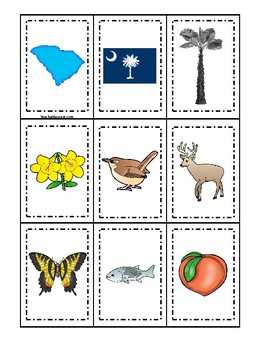 South Carolina State Symbols themed Memory Match Preschool Educational Card Game