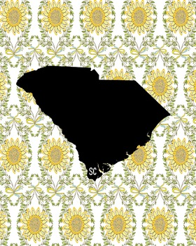 South Carolina Vintage State Map or Poster Class Decor Decoration