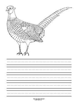South Dakota State Bird Notebooking Set (Ring-Necked Pheasant)