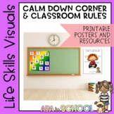 Special Education and ABA Classroom Posters