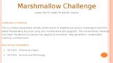 Spaghetti Marshmallow Challenge