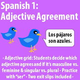 """Spanish 1 - Adjective agreement and """"ser"""""""