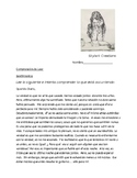 Spanish 3 Reading Comprehension  Sentimientos