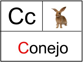 Spanish ABC Vocabulary Cards