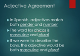 Spanish Adjective Agreement-Descubre 1 Lesson 3