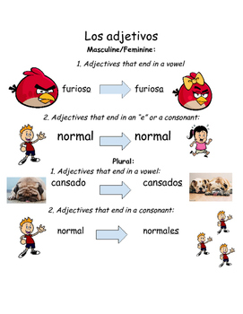 Spanish Adjective Agreement Notes Reference Worksheet