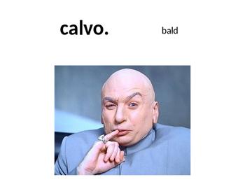 Spanish Adjective Vocab Powerpoint