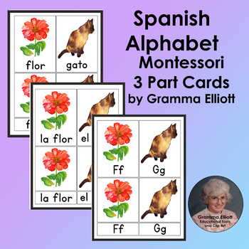 Spanish Alphabet - 3 Part Cards - Montessori