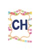 Spanish Alphabet - Papel Picado Theme