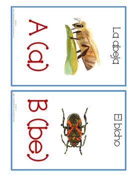 Spanish Alphabet Wall Cards
