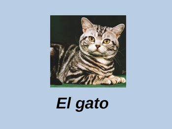 Spanish Animal Vocabulary Powerpoint Activities and Games