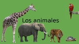 Spanish Animals Vocabulary Presentation