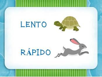 Spanish Antonyms (opposites) - colorful, fun graphics