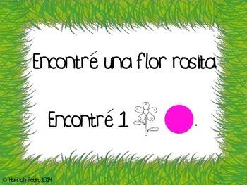 Spanish Around the Garden Spring Plurals Match *CCSS Aligned*