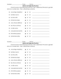 Spanish Article and Adjective Practice - Find the Error