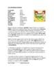 Spanish Beginner Readings Bundle - 5 Lecturas en Español (Version 2)